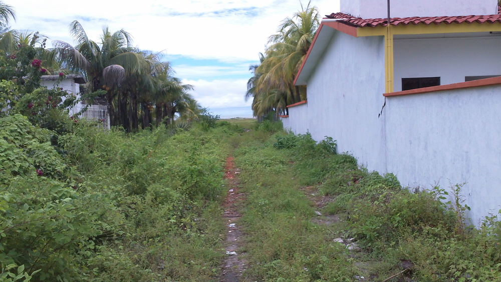 From Marina Chiapas we would ride our folding bikes the 3 miles or so to this unassuming path that led to